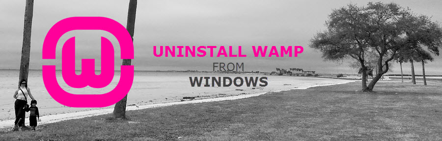 How to uninstall WAMP Server from Windows