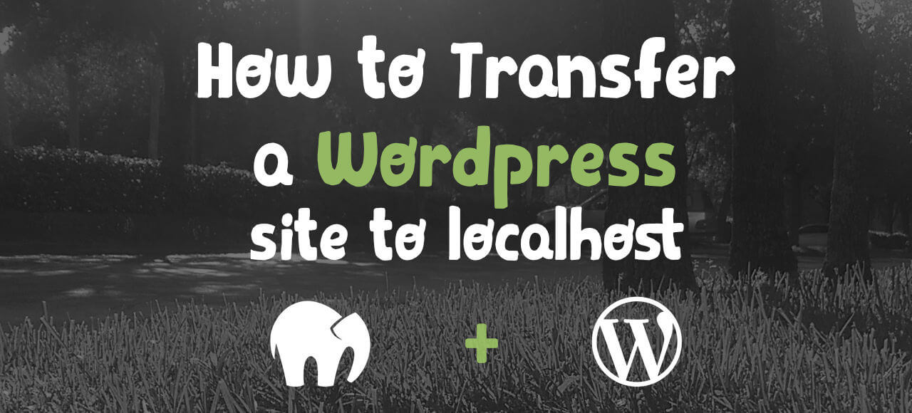 How to transfer a live WordPress website to your localhost manually